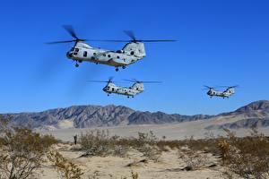 Fotos Hubschrauber Boeing Flug Boeing Vertol, CH-46 Luftfahrt