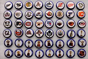Photo Hockey Logo Emblem NHL