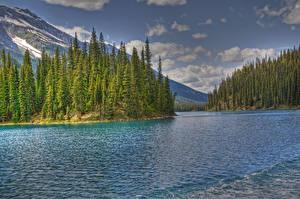 Hintergrundbilder USA Park See Gebirge Wälder Wolke HDR Jasper park Maligne Lake Natur