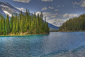 Hintergrundbilder USA Park See Gebirge Wälder Wolke HDRI Jasper park Maligne Lake