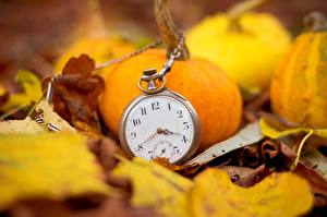 Wallpapers Pumpkin Closeup Clock Pocket watch