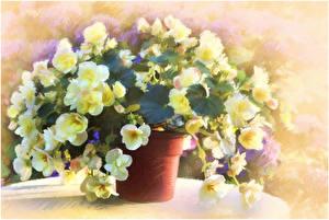 Photo Pictorial art Bouquets Painting Art Igor Levashov Flowers