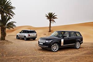 Picture Range Rover Desert Two Palm trees Metallic 2013 Range Rover auto
