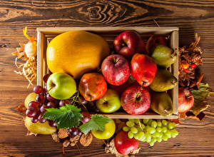 Photo Fruit Autumn Apples Melons Grapes Pears