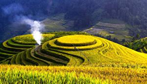 Bilder Felder Landschaftsfotografie Ähre Natur