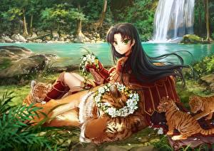 Fotos Krieger Babys Tiger Brünette huazha01, original Anime Mädchens