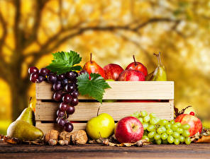 Picture Fruit Apples Pears Grapes Autumn Nuts