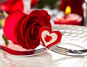 Bilder Rose Großansicht Feiertage Valentinstag Herz Essgabel Rot Blumen
