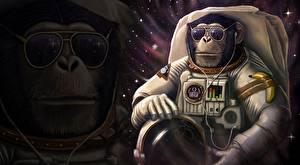 Wallpaper Monkey Cosmonauts Glasses Helmet Fantasy Animals Space Humor