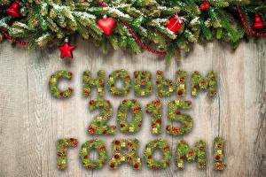 Hintergrundbilder Feiertage Neujahr Stern Ast 2015