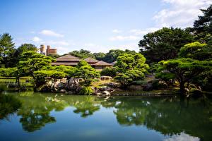 壁纸、、日本、ガーデン、池、木、Takamatsu Japan Ritsurin garden、自然