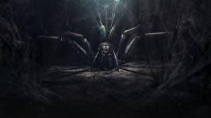 Bakgrunnsbilder Bokillustrasjoner Edderkopper Ringenes herre Ringenes herre: Atter en konge Fantasy