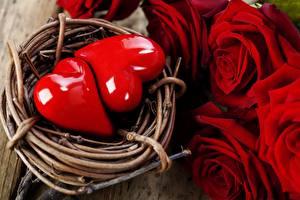 Fotos Feiertage Rosen Großansicht Valentinstag Herz Rot Blumen