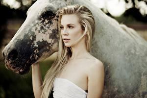 Bilder Hauspferd Großansicht Blond Mädchen Starren junge frau Tiere