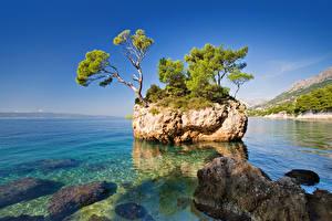 Wallpapers Croatia Sea Scenery Rock Trees Brela Nature
