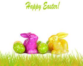 Фотографии Праздники Пасха Кролики Яйца Траве