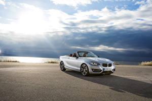 Pictures BMW Sky White Convertible Metallic 2015 228i F23 convertible auto