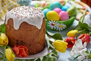 Fotos Feiertage Ostern Backware Tulpen Kulitsch Zuckerguss Eier