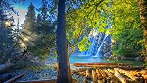Bilder USA Wasserfall Flusse Lichtstrahl Baumstamm HDR Virgin Falls Tennessee Natur
