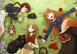 Bakgrunnsbilder Spice and Wolf Epler Tre 3 Anime Unge_kvinner