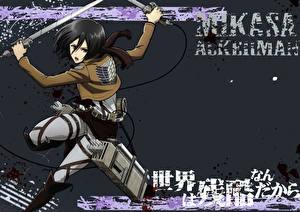 Wallpapers Attack on Titan Warrior Mikasa Ackerman Girls