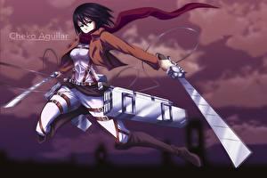 Pictures Attack on Titan Warriors Swords Mikasa Ackerman Girls