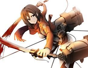 Picture Attack on Titan Warriors Flight Sabre kamitsurugi ouka, mikasa ackerman, Girls