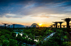 Photo Singapore Gardens Sunrises and sunsets Scenery Sky Trees Gardens by the Bay Nature