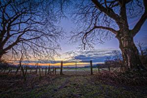 Hintergrundbilder Landschaftsfotografie Sonnenaufgänge und Sonnenuntergänge Acker Himmel Zaun Ast HDR Natur