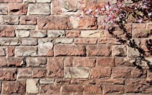 Wallpaper Texture Walls Made of bricks Made of stone