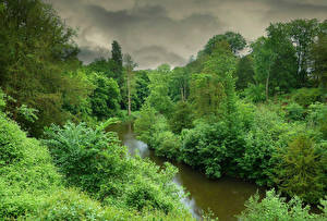 Picture Forests Rivers Scenery Storm cloud Trees Nature