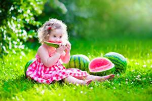 Hintergrundbilder Wassermelonen Kleine Mädchen Kleid Gras Sitzend kind