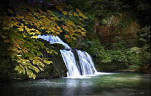 Fotos Wasserfall Herbst Ast Blattwerk Natur