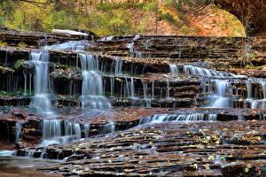 Bilder Park Wasserfall Vereinigte Staaten Zion-Nationalpark Felsen