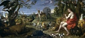 Hintergrundbilder Gemälde Hirsche Füchse Große Katze Jaguaren Löwe Mann Pfauen Vogel