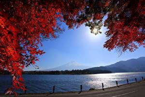 Bilder Japan Landschaftsfotografie Flusse Fuji Vulkan Ast Natur