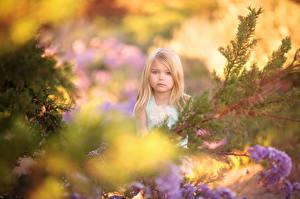 Fotos Kleine Mädchen Ast Blondine Glimpse of Spring Kinder
