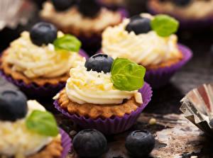 Hintergrundbilder Heidelbeeren Törtchen Süßigkeiten Backware Großansicht Cupcake Lebensmittel