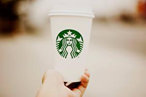 Fotos Großansicht Logo Emblem Trinkglas Hand starbucks