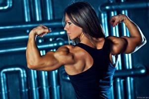 Fonds d'écran Bodybuilding Débardeur Dos Muscle Olga Belyakova muscle pose sportive Filles