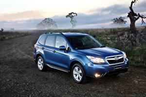 Bilder Subaru Blau 2014 Forester