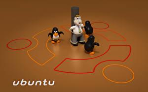 Wallpapers Ubuntu Linux Best Computers Humor 3D_Graphics