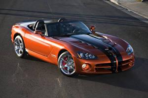 Bilder Dodge Orange Cabriolet Metallisch Strips Roadster 2010 Viper SRT10 roadster
