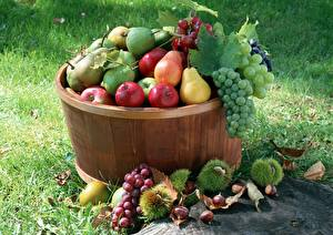 Wallpapers Grapes Apples Pears Fruit Grass