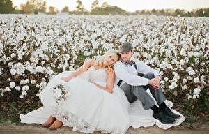 Hintergrundbilder Mann Paare in der Liebe Brautpaar 2 Sitzend Kleid Blond Mädchen Bräutigam Mädchens
