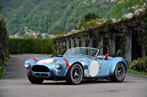 Fotos Ford Tuning Antik Cabriolet Roadster 1964 Shelby Cobra 289 FIA Competition Roadster