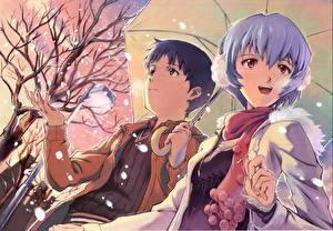 Tapety na pulpit Neon Genesis Evangelion Chłopacy umbreon ayanami rei ikari shinji Anime Dziewczyny