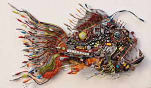 Wallpaper Fish Creative hi-tech