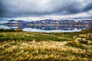 Image New Zealand Lake Mountain Grass Hawea Nature