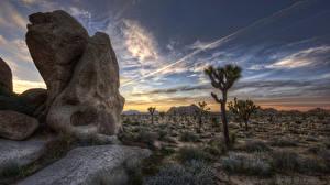 Bilder USA Wüste Gebirge Kalifornien HDRI Natur